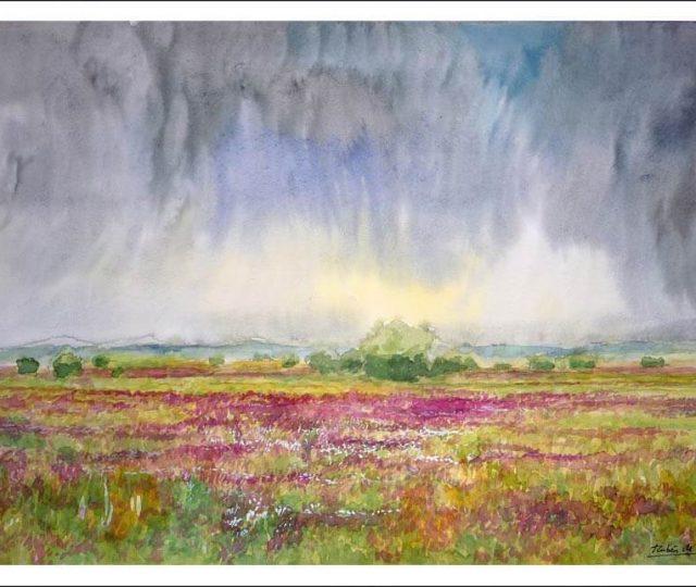 Cuadro de una tormenta en un campo de flores