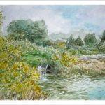 Paisaje de las lagunas de Ruidera