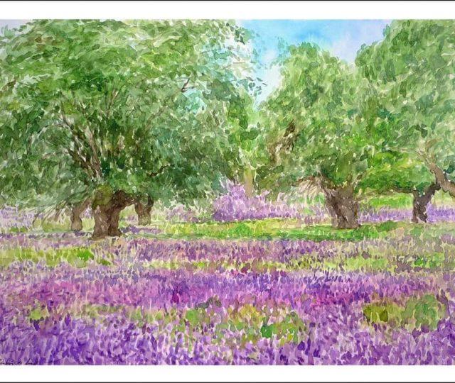 Acuarela de flores violétas y moradas.