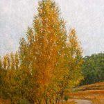 Paisaje de otoño con chopos