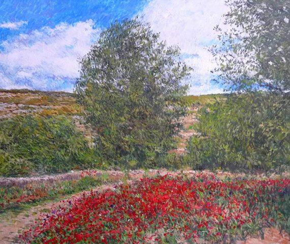 Cuadros de flores y jardines