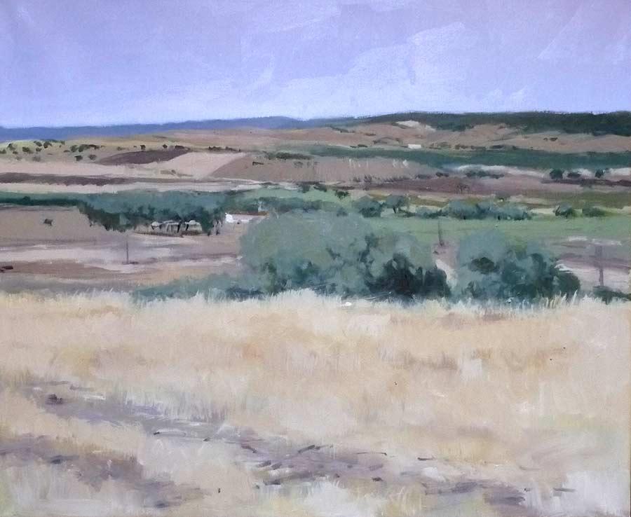 Campo de Montiel, óleo