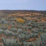 paisaje de olivos en la Alcarria de Guadalajara