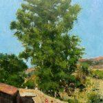 El gran árbol al atardecer. Sierra del Rincón, Madrid