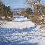 Paisaje nevado, la luz del invierno