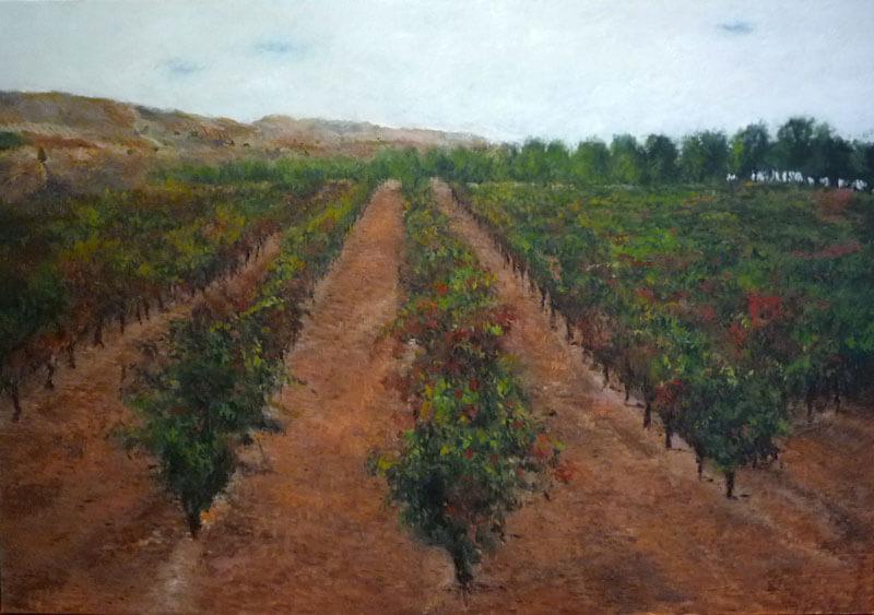 Paisaje de un viñedo en Azagra, Navarra