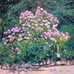 Hortensias en un jardín