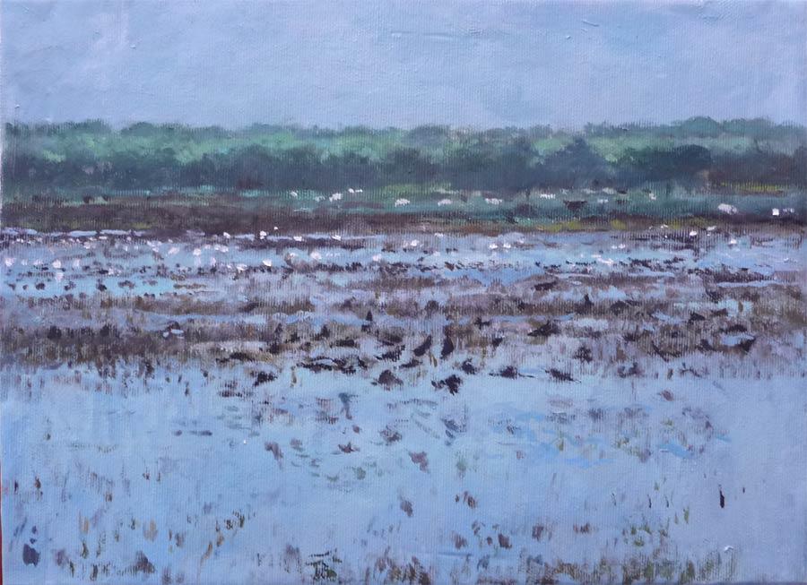 Cuadro al oleo de un paisaje de Doñana