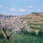 Almendro en flor al comienzo de la primavera