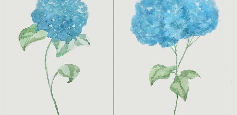 Pareja de acuarelas de hortensias en azul