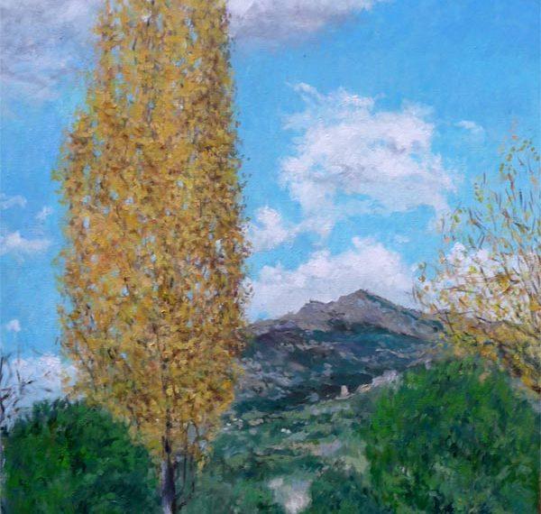 Cuadro al oleo de un paisaje de la Pedriza de Manzanares, Madrid.