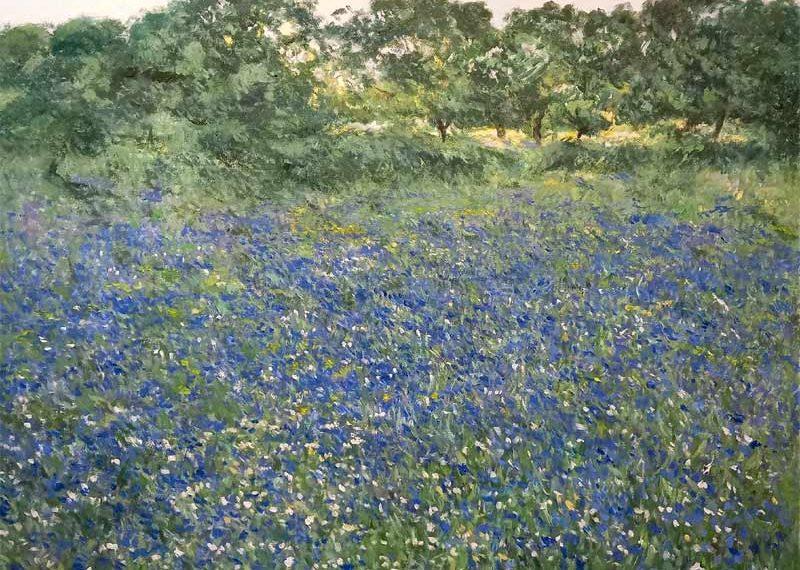 Paisaje de flores a comienzos de primavera.