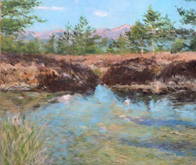 Paisaje al oleo de una laguna en Navarra